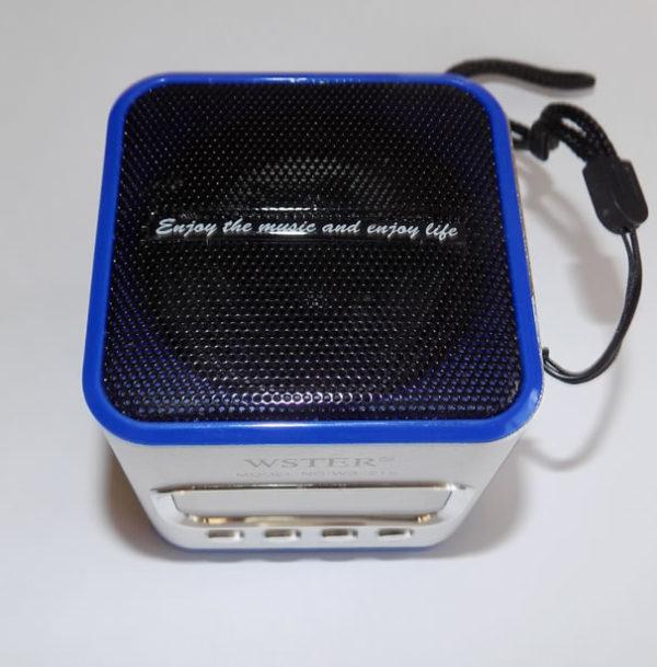 Портативная колонка WS-215 c радио
