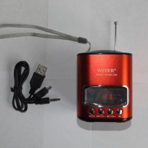 Портативная колонка WSTER WS-259 с радио и MP3 плеером