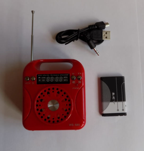 Мини колонка WSTER WS–585 FM-радио, USB, TF card